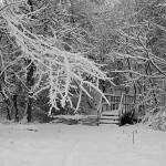 St. Wendel: Einladung zur Winterwanderung der CDU