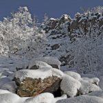 Let it snow?! – Schneefall in der Nacht auf Dienstag