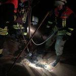 Landkreis St. Wendel: Erneutes Unwetter sorgte für über 50 Einsätze für Feuerwehr und THW