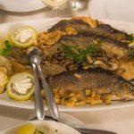 2. Fischfestival Saar-Hunsrück – Leckeres rund um die heimischen Fischarten