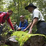 Nationalpark: Ab 27. März starten die Rangertouren wieder an 5 Wochentagen