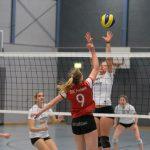 Volleyball: Letztes Heimspiel für den Spitzenreiter SSC Freisen