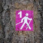 Namborn: Nordic Walking-Park Schlossberg wieder neu ausgeschildert