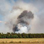 St. Wendeler Land: Feuerwehren warnen vor steigender Gras- und Waldbrandgefahr