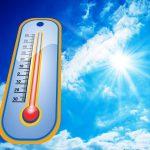 Lebensgefahr für Mensch und Tier bei Hitzestau im Auto