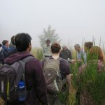 "Umwelt-Campus Birkenfeld: Dritte Internationale Summer School ""IT-Fundamentals of National Park Monitoring 2018"""