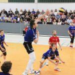 Volleyball: Bliesen vor letztem Heimspiel des Jahres gegen Friedrichshafen