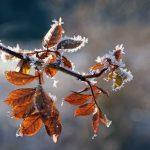 Oberthal: Natur- und kulturkundliche sagenumwobene Wanderung