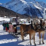 Mit dem Pferdeschlitten zur nächsten Piste – Schüler des Cusanus-Gymnasiums im Schulskikurs