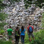 Umweltcampus Birkenfeld: Wald schreibt Geschichte!