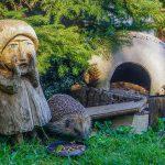 Der Igel vom Schaumberg – Eine schöne und wahre Geschichte von Anton Didas