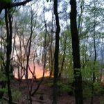 Theley: Feuerwehr kämpfte am Ostermontag gegen Waldbrand