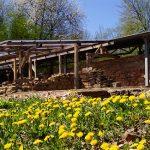 Tholey: Spaziergang über das Grabungsgelände
