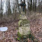 Sotzweiler: SaarForst lädt in den Frühlingswald ein