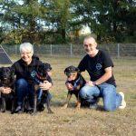 """St. Wendel: St. Wendeler Tierschutzverein """"Streetdogs Madeira e.V."""" stellt sich vor"""