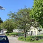 Tholey: Einhalt für Raser – Gemeinde gibt Gutachten zur Erstellung eines Verkehrssicherheitskonzeptes in Auftrag