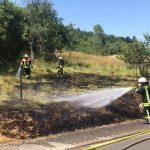 Steinberg/Deckenhardt: Flächenbrand von Feuerwehren bekämpft