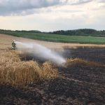 Bliesen: Feuerwehren löschen Flächenbrand