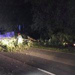 Theley: Verkehrsunfall am frühen Morgen