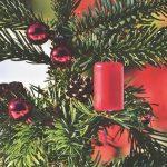 Christbaumsammelaktion in der Gemeinde Nohfelden findet in diesem Jahr anders statt