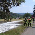 Flächenbrand in Nonnweiler