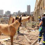 THW-Einsatz Libanon – Rettungsmaßnahmen abgeschlossen
