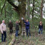 NABU Saarland und Gemeinde Tholey zeichnen Patenbäume aus