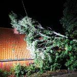 Namborn: Eiche stürzt auf Haus