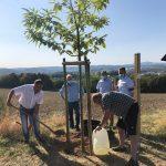 """In Gedenken an Nico und die Suizidopfer im St. Wendeler Land – Erster """"Tree of Memory"""" gepflanzt"""