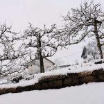 Schneefall im St. Wendeler Land