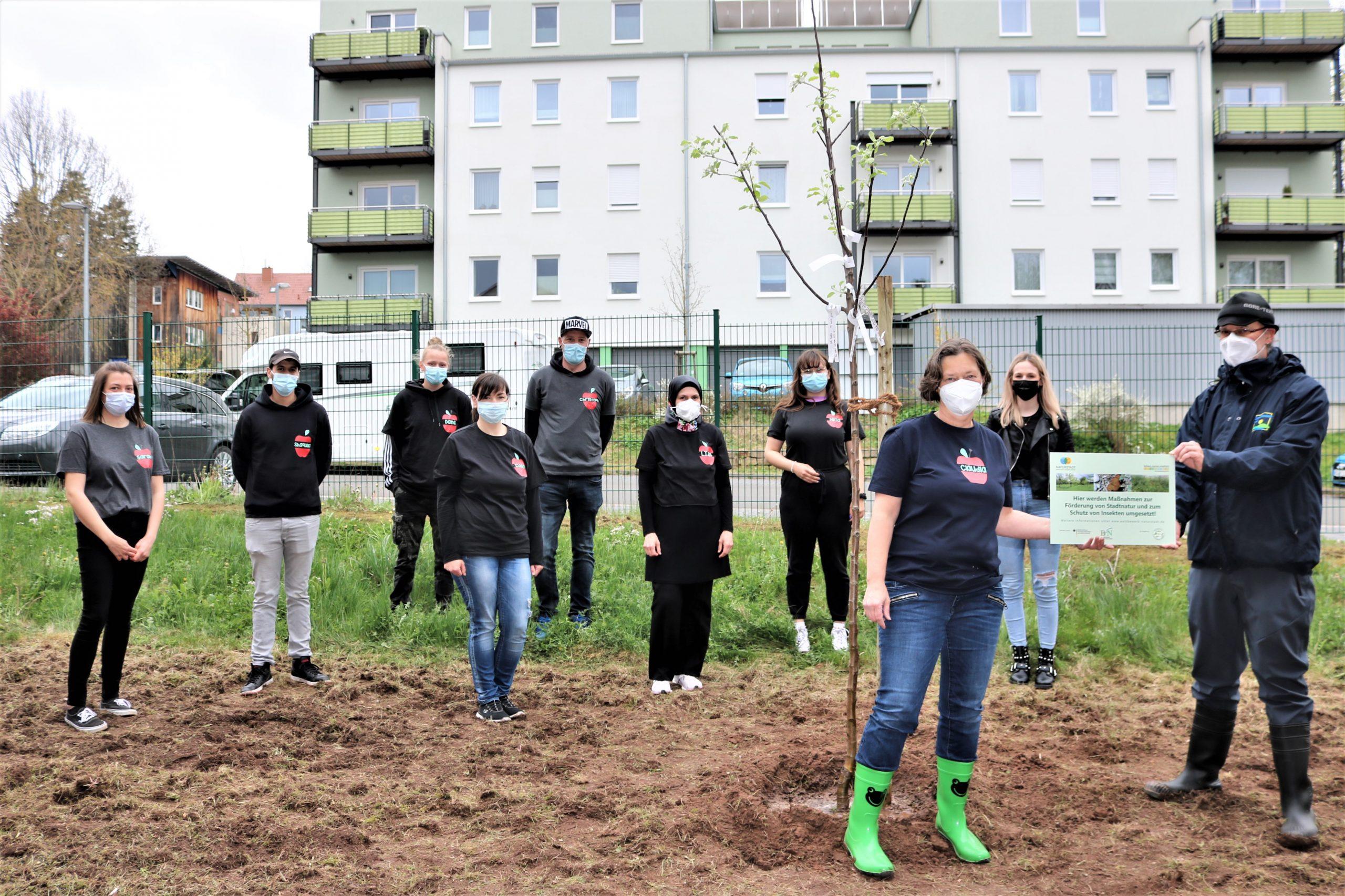 Dr.-Walter-Bruch-Schule setzt sich für Stadtnatur und Insektenschutz ein