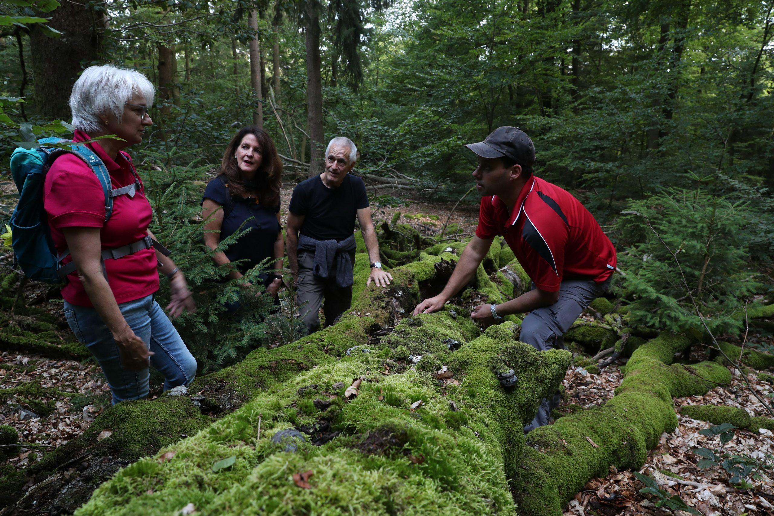 Nationalpark-Erlebnistouren wieder gestartet, Trekking-Camps geöffnet